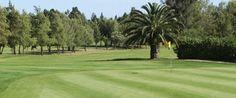 Portugal is dé golfbestemming binnen Europa!  De combinatie van het aantal uitdagende golfbanen met het heerlijk zonnige klimaat maakt Portugal zeer geliefd als bestemming voor een golfvakantie. De meeste golfbanen vindt u in het zuiden van het land, in de Algarve. Een streek die al meermalen is uitgeroepen tot 's werelds beste golfbestemming