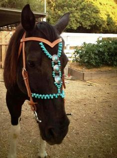 Beaded Headstall Horse Pony on Etsy, $300.00