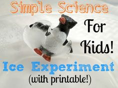 Simple Science for Kids -- Ice Experiment w/ printable