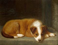 """""""Waiting for Master"""" by Horatio Henry Couldery, English animal painter, Collie Puppies, Dogs And Puppies, Animal Painter, English Shepherd, Pet Gate, Dog Illustration, Animal Illustrations, Vintage Dog, Dog Portraits"""