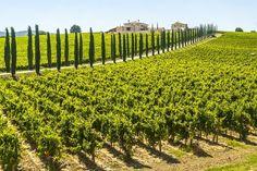 #Umbrië #Italië #Italiaans #groen #landschap #vakantie #zomer #zon #zonvakantie #regio #cultuur #historie #reizen #travel #travelbird