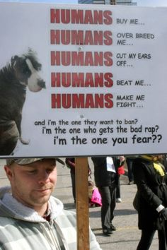 Take some responsibility humans! Instead of killing dogs, punish the ones who make dogs suffer!