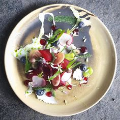 Salt baked beets, fave beans, fermented beets, radishes, goats cheese, blue berries, spring onions
