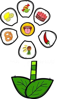 Build a Flower 5 Senses Match Preschool Jobs, Five Senses Preschool, Nursery Rhymes Preschool, Body Preschool, Senses Activities, Educational Activities For Kids, Preschool Classroom, Preschool Worksheets, Kindergarten Activities