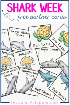 Choosing partners can be a daunting task for teachers and students alike. These shark cards are a fun, random way to help with assigning partners in the classroom! Free Preschool, Preschool Printables, Organization And Management, Classroom Management, Classroom Themes, Classroom Organization, Partner Cards, Ocean Unit, Ocean Activities