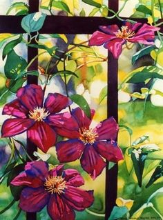 Clematis by Mary Sorrows Hughes