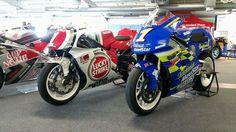 Two Suzuki 500cc Champions