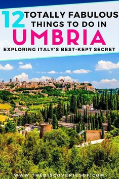 Umbria is Italy's best-kept secret. Brimming with gorgeous food, amazing landscapes and vineyards it should be at the top of your list. Explore medieval towns such as Todi, Spello, Trevi and Assisi and discover the beauty of the region. Places To Travel, Travel Destinations, Things To Do In Italy, Italy Travel Tips, Budget Travel, Italy Vacation, Italy Honeymoon, Italy Trip, Visit Italy