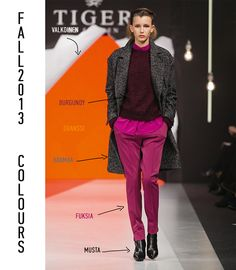 FALL 2013 FASHION COLOURS