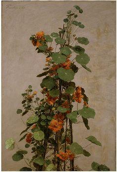 Nasturtiums, Henri Fantin-Latour