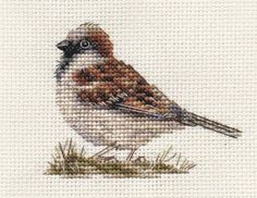 SPARROW ~ Garden Bird ~ Full counted cross stitch kit with all materials