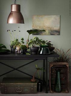 Pots et vases Sinnerlig Ikea Livet Hemma via Nat et nature Sweet Home, Sweet Sweet, Sinnerlig Ikea, Dark Green Walls, Dark Interiors, Interior Plants, Green Rooms, Home And Deco, My New Room