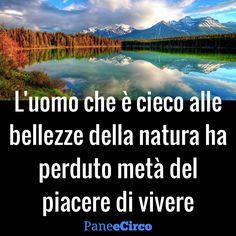 immagini con citazioni bellezza della natura - Cerca con Google