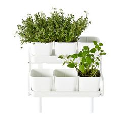 ikea SOCKER Plant 6 pots with holder indoor outdoor white hang on balcony rail