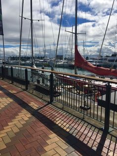 Sunny day down at the Viaduct Freelance Photography, Auckland, Outdoor Furniture, Outdoor Decor, Sunny Days, Hammock, Sailing, City, Travel