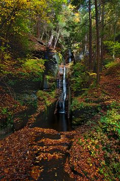 Silver Thread Falls, Delaware Beautiful Waterfalls, Beautiful Landscapes, Places To Travel, Places To See, Beautiful World, Beautiful Places, Forest Path, Land Of Enchantment, Amazing Nature