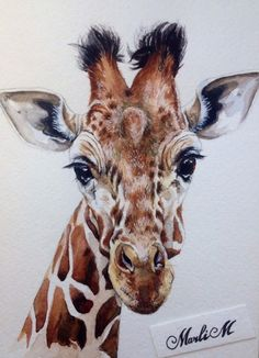 Illustrator MarliM | watercolor giraffe