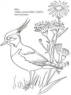 Madarak és fák napja – Anya játsszunk! Bird Drawings, Colorful Drawings, Animal Drawings, Easy Drawings, Bird Coloring Pages, Adult Coloring Pages, Coloring Books, Butterfly Drawing, Drawing Projects