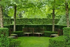 Hedges are the classic way to give an outdoor area a touch of class.  A beautifully trimmed hedge is the perfect finishing touch to a delightful garden.  Hedges provide valuable privacy and can protect your garden from the elements.