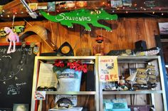 A Florida Everglades Lunch at Joanie's Blue Crab Cafe | Solo Travel Girl