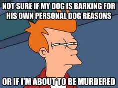 I seriously wish he'd stop, though. Unless there're zombies. Then he can bark till he's hoarse.