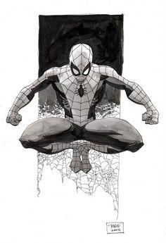 Spider-Man, by Tim Sale