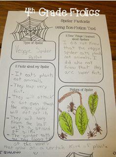 4th Grade Frolics: Daily 5