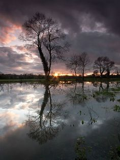 Floodplains  Photograph by Anthony Byrne  This was taken on the Irish floodplains during the winter.