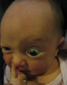 nose picking by NikkiNix on DeviantArt Funny Baby Photos, Funny Baby Faces, Cute Baby Pictures, Funny Pictures, Cool Baby, Cute Little Baby, Cute Baby Girl, Cute Babies, Funny Kids