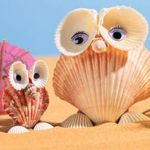 Have you been to the beach and let your kids bring home seashells?  Now you can make something fun.
