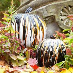 painted pumpkin ideas - Google Search