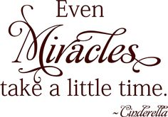 Cinderella Quotes About Miracles   Even Miracles take a little time -Cinderella - Vinyl Lettering wall ...