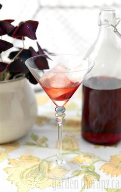 Berry Infused Vodka #cocktail #recipe from @Nicky Crowley @Nicky @dirtandmartinis