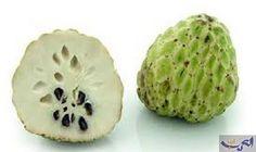 فاكهة تقضي تماما على السرطان بدون أدوية: فاكهة القشطة أو السرسرب هي من الفواكه الاستوائية وتزرع في المناطق الحارة ، موطنها الأصلي هو أمريكا…