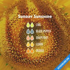 Sunday Sunshine - Essential Oil Diffuser Blend