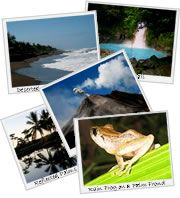 When to Travel in Costa Rica, Transportation, Tips, etc.