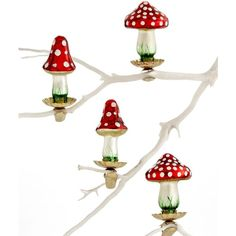 Holiday Lane Box of 4 Mini Mushroom Ornaments ($12) ❤ liked on Polyvore featuring home, home decor, holiday decorations, no color, red glass ornaments, red ornaments, glass home decor, mini glass ornaments and holiday lane