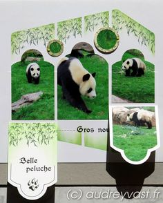 Duo fidji Diy Scrapbook, Scrapbooking Layouts, Scrapbook Pages, Digital Scrapbooking, Perth Western Australia, Let's Create, Panda Bear, Mosaic, Photos