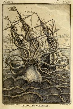 "biodivlibrary: "" ""Release the Kraken! Lovecraft's short story ""The Call of Cthulhu,"" Cthulhu (a part man, part dragon, and part octopus monster) attacks a ship. The sailors try to kill the. Le Kraken, Kraken Art, Mythical Creatures, Sea Creatures, Octopus Illustration, French Illustration, Giant Squid, Octopus Print, Octopus Octopus"