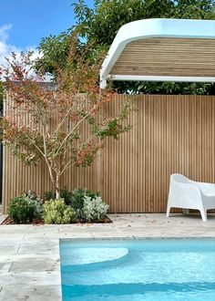 Pool, structure and timber screen design by tristanpeirce Landscape Architecture Backyard Pool Designs, Backyard Garden Design, Pool Landscaping, Pool Landscape Design, Landscape Architecture, Screened Pool, Timber Screens, Exterior Rendering, Front Yard Design