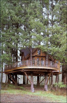live in a tree house.or at least have a spare room in the tree house Cabin In The Woods, Cool Tree Houses, Curved Staircase, Spiral Staircases, Staircase Design, Cabins And Cottages, Log Cabins, Horse Farms, In The Tree