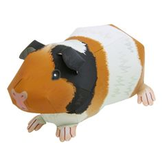 """Guinea pig. """"All of the materials provided on this website can be freely used for personal and non-commercial purposes. Examples of Permitted Uses: - Downloading materials for use as educational materials in schools and other educational institutions, providing that this website is clearly displayed as the source."""""""