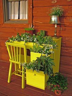 Creative desk #container #garden