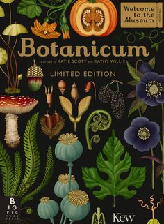 Emily Hughes e Katie Scott: l'illustrazione è botanica : IL Magazine Old Illustrations, Illustration Art, Vintage Botanical Illustration, Botanical Drawings, Botanical Prints, Katie Scott, Impressions Botaniques, Flora Und Fauna, Illustration Botanique