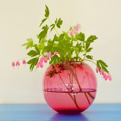 Foraged stems from your garden and a pretty vase for a Spring arrangement.