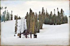 | s n o w @ Badger Pass Ski Area | Yosemite National Park California 02292016