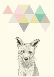 Briki Vroom Vroom `Prent A5 Wolf`