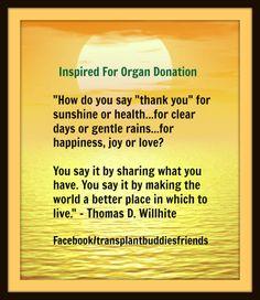 Appreciating your Life