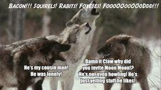 Gotta love Moon Moon the wolf:)