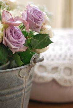 ohhh purple roses <3